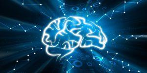 Высокий уровень стресса может уменьшить ваш мозг