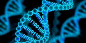Расшифрован генетический код нового коронавируса