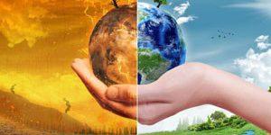 6 нужных дел, которые должен выполнить человек для спасения нашей планеты