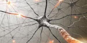 Проба на молекулярном уровне поможет диагностировать рассеянный склероз