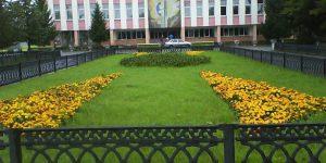 Поселок Рощино Челябинской области: комфортное жилье в экологически чистом районе