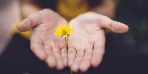 Как обрести счастье. Все очень просто, чем вы думаете