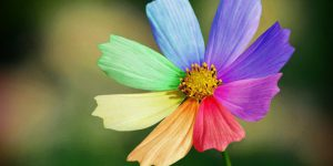 Мысли материальны: закон воплощения правильно сформулированных желаний