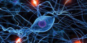 Виды гипноза в психологии