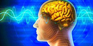 Во время сна наш мозг нуждается, чтобы проанализировать события дня и перенести их в воспоминания: впервые ученые смогли увидеть, как это происходит