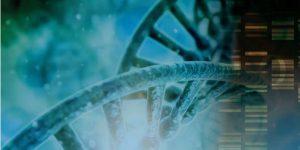 Кто такой генетик? Грегор Иоганн Мендель — основоположник генетики. История генетики
